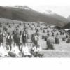Davoser Revue – Ausgabe Landwirtschaft, Inhalt