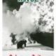 Davoser Revue – Ausgabe Schwere Zeiten, Titelbild