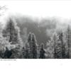 Davoser Revue – Ausgabe Lesen, Inhalt